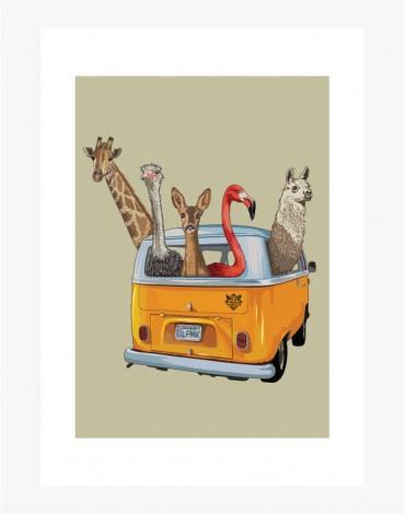 Poster Noah's Van